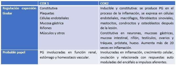 Colegio de Endodoncia de Nuevo León, A  C , Cuarto Concurso